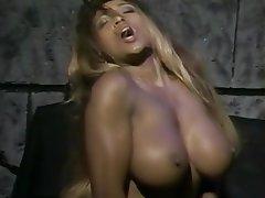 Big Boobs, Big Butts, Pornstar